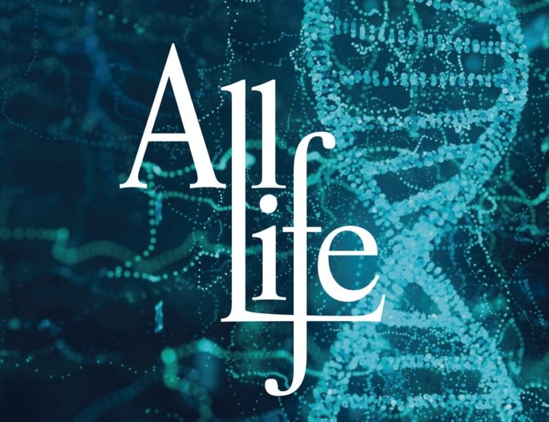 All Life journal front cover